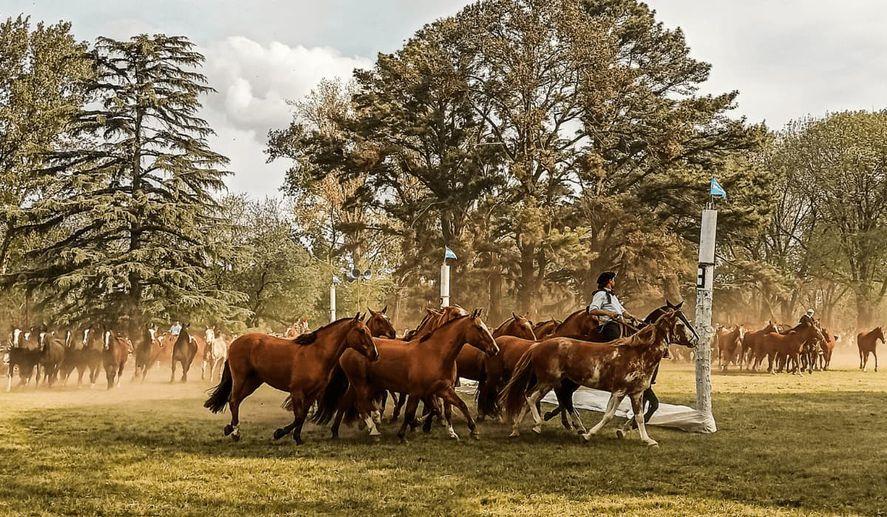 bragado-fiesta-nacional-del-caballo-2021jpg